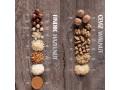 aydin-kuruyemis-nuts-turkish-company-small-2