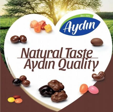 aydin-kuruyemis-nuts-turkish-company-big-4
