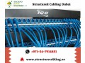 why-to-choose-techno-edge-systems-for-structured-cabling-in-dubai-small-0