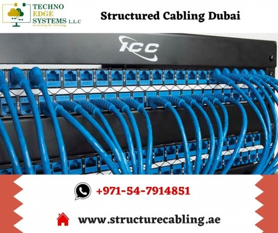 why-to-choose-techno-edge-systems-for-structured-cabling-in-dubai-big-0